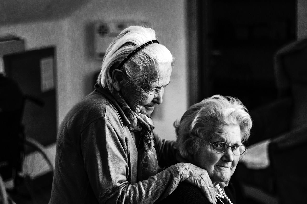 elder companionship